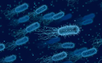 All antibiotics are antibacterial, but not all antibacterial are antibiotics