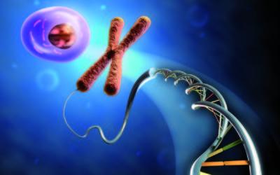 (Italiano) Bioprocessi e biotecnologie, cosa sono e quali sono i campi d'impiego