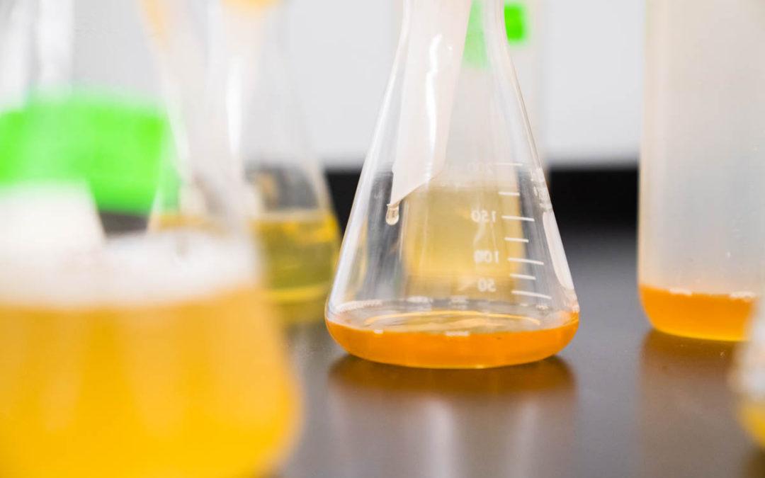 (Italiano) Biochimica, sempre più presente in ambito industriale