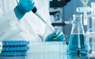 (Italiano) Analisi chimiche delle fibre biologiche nei mangimi animali, i processi automatizzati
