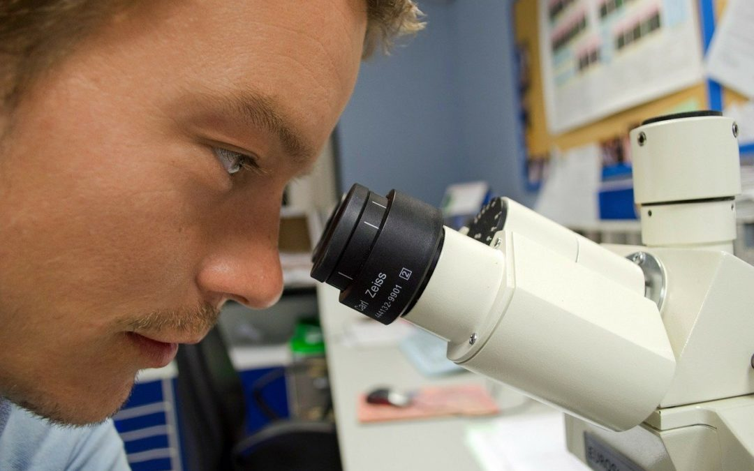 Laboratorio analisi microbiologiche: requisiti degli AFMS