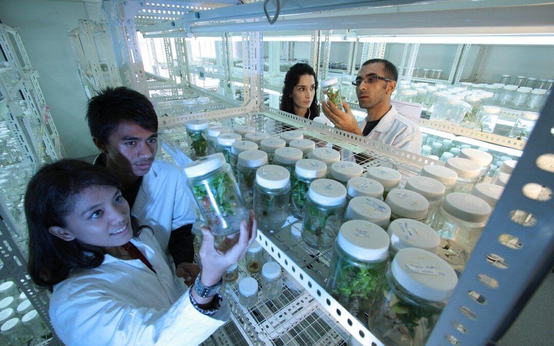 Laboratorio analisi ambientali: quali servizi offre
