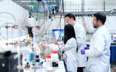 (Italiano) Laboratorio di analisi, utilizzo dei biocatalizzatori